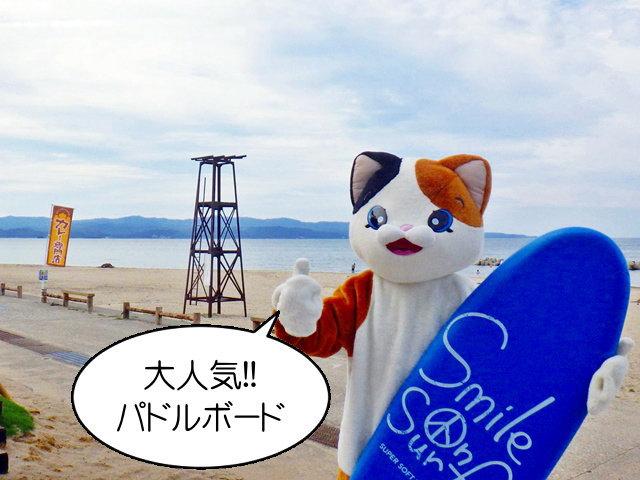 海のレジャーを楽しむ パドルボード体験・海水浴・釣り・サーフィンスクールなど
